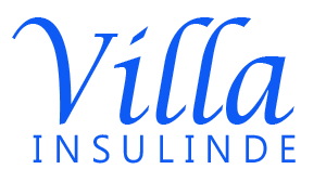 Villa Insulinde Logo